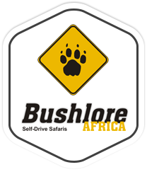 photo source logo : site internet Bushlore