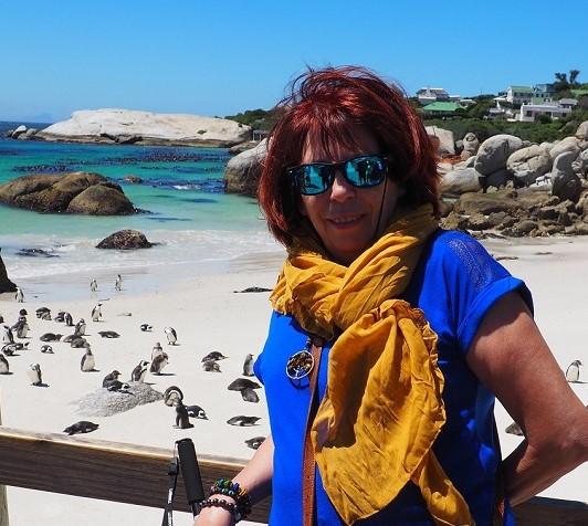 Bouls'ders manchots du Cap Afrique du Sud avec Msi