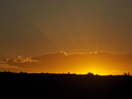 coucher de soleil sur Addo Elephant Afrique du Sud