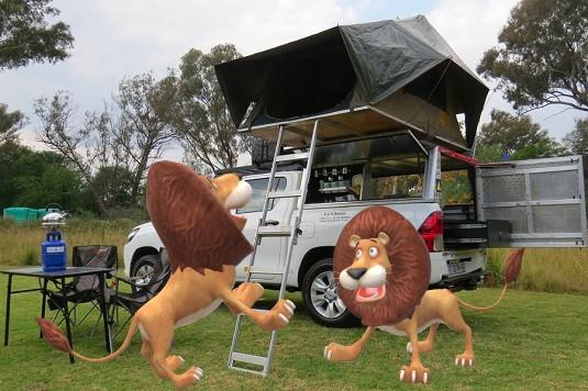 PHOTO MONTAGE AVEC DES LIONS