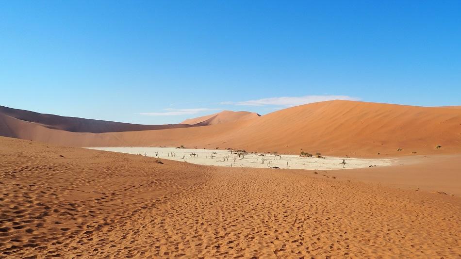 le Dead Vlei  a sossusvlei en namibie
