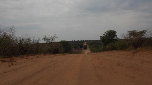 piste qui rejoint Kachekau Botswana.