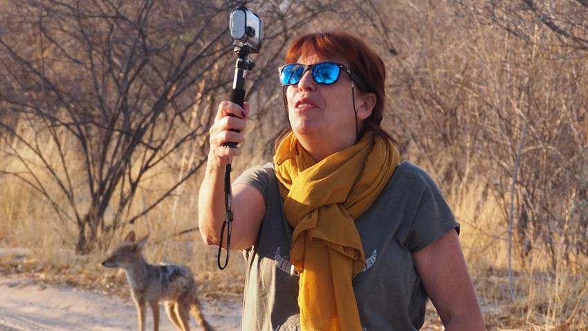 Msi filme le coyote au CKGR Botswana