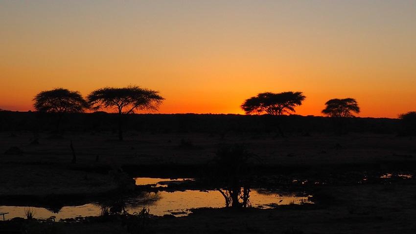 Premières lueurs du jour sur Senyati.  Daybreak at Senyati Botswana